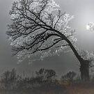 Frosty Winter's Eve by wiscbackroadz