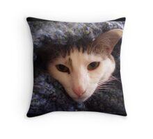 Simply Cozy Throw Pillow