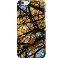 Autumn Leaves Like A Painting iPhone Case/Skin