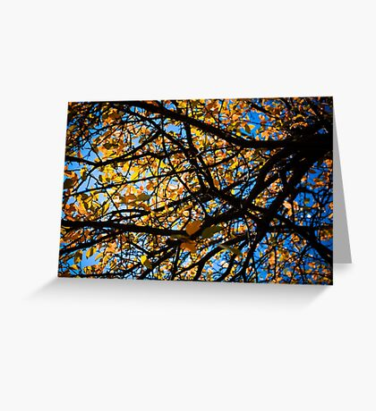 Autumn Leaves Like A Painting Greeting Card