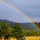 Rainbows end! by DanTheBugleMan