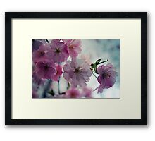 This is why I love spring Framed Print