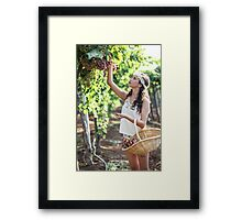 Young Teen girl in white dress picks grape in a vineyard  Framed Print