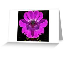 Anemone with Amulet design Greeting Card