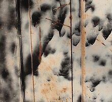 Door Abstract #1 by Peter Baglia