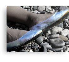 Silver Slippers Metal Print
