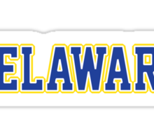 Delaware Jersey Sticker