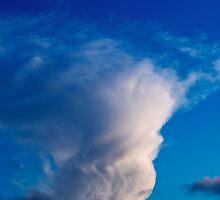 Cloud  by Bartosz  Modrzejewski