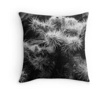 Cholla Cactus No. 1 Throw Pillow