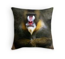 Mandrill Baboon Throw Pillow