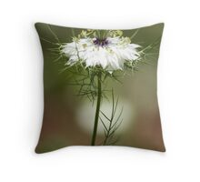 White Nigella Damascena, Love-in-a-mist or Devil-in-the-Bush Throw Pillow