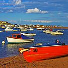 Teignmouth Harbour by Hertsman