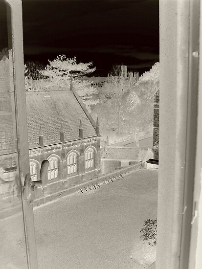 The Uni View  by AmyX