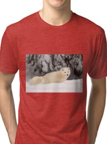Arctic Wolf (Canis lupus arctos), also called snow wolf or white wolf Tri-blend T-Shirt