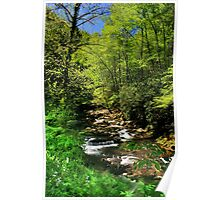 Great Smoky Mountain Stream Poster