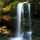 Grotto Falls ~ GSMNP by Lisa G. Putman