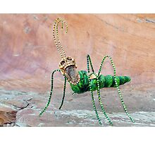 Freaky Bug Photographic Print