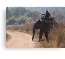 Mahout and Elephant Canvas Print