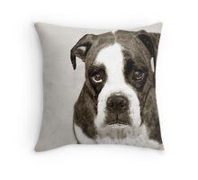 Dakota - 1 Throw Pillow
