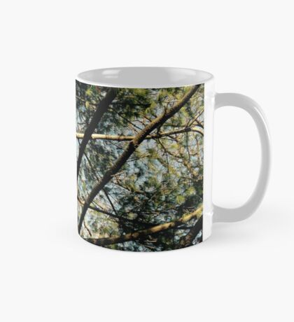 Pine Tree in Central Park NYC Mug
