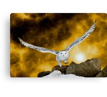 Descendant from heaven Canvas Print