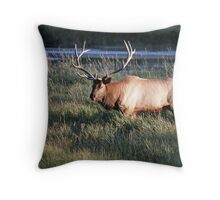 Big Bull Elk Throw Pillow