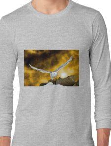Descendant from heaven Long Sleeve T-Shirt