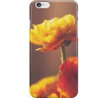 Cinnamon Peach iPhone Case/Skin