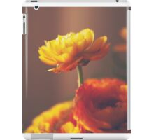 Cinnamon Peach iPad Case/Skin