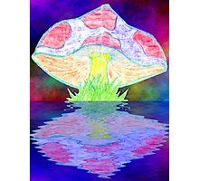 Collaboration: Christi's Mushroom Redo Photographic Print