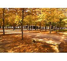 Impressions of Paris - Tuileries Garden, Come Sit a Spell Photographic Print