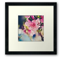 Pink Birth Framed Print