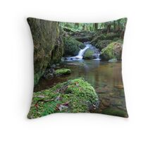 Whitehouse Creek Throw Pillow