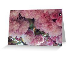 Blooming Tree Greeting Card