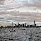 Auckland Panorama by Ant Vaughan