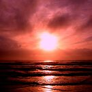 Peaceful Fury by Julie Thomas