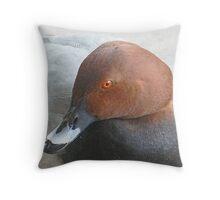 A Pochard Drake Throw Pillow