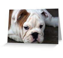 Barney the Bulldog Greeting Card