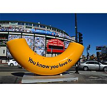 Wrigley Field Chicago with Art Piece  Photographic Print