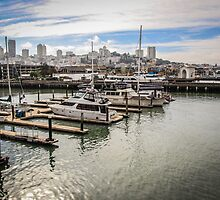 San Francisco View from the Waterfront by Nicole Petegorsky