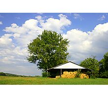 SUMMER DAY ON THE FARM Photographic Print