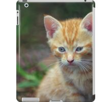 The Two of Us iPad Case/Skin