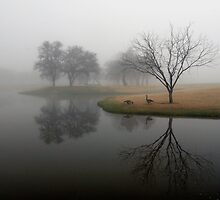 Two Geese Reflect by Christian von Schleicher