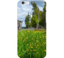 Reclaimed by Nature iPhone Case/Skin