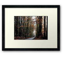 High beech-trees in late December Framed Print