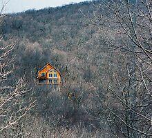 lone cabin by focusonyouphoto