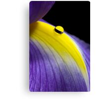 Droplet on Iris Canvas Print