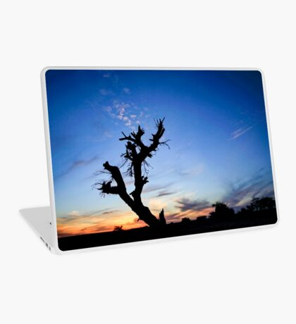 Dry parched tree in a desert landscape at sunset Laptop Skin