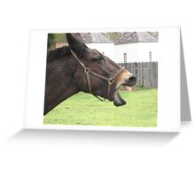 The Laughing Mule Greeting Card