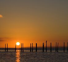 Solent Sunrise by kevomanno